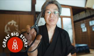 Have You Ever Heard of Bonsai Scissors That Cost $32.000?