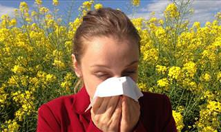 Pressure Point for Alleviating Allergies