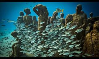 The Underwater Art Museum