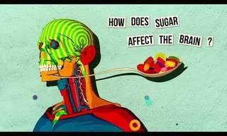 How Sugar Affects Our Brain...