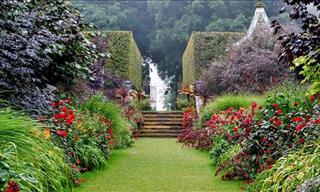 England's Most Beautiful Gardens