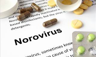Protect Yourself Against the Norovirus
