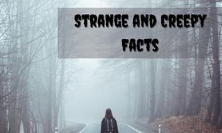 It's Time for Some More Spine Chilling Facts