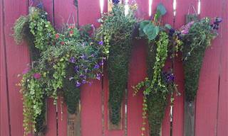 5 Guides for Vertical Gardening