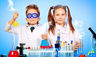 QUIZ: Can You Pass an Elementary Science Test?