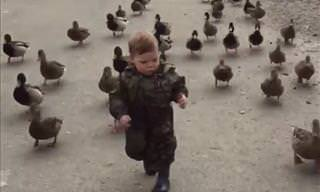 Ducks Are Awesome and This Compilation Video Proves It!