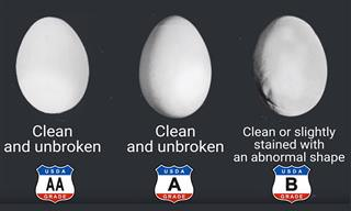 The Difference Between Grade AA, A, And B Eggs...