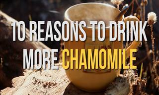 Reasons to Drink Chamomile Tea