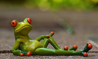 Joke: To Marry a Frog (Rude)