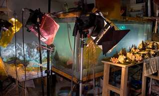 Kim Keever's Underwater Diorama Photography!