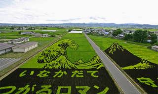 Art By Field - Remarkable!