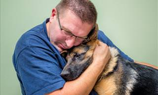 Who Can Benefit from Having an Emotional Support Dog?