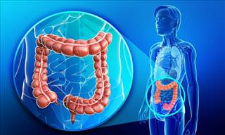 Gastric Obstruction – Causes, Symptoms & Treatments