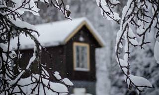 Magnus Dovlind's View of Sweden in Winter