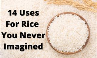 14 Uses For Rice That You Never Imagined