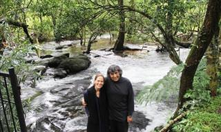 This Couple Has Regrown an Entire Rainforest!