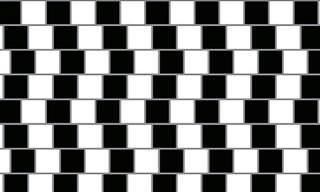 20 Mind-Bending Optical Illusions To Test Your Perception