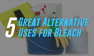 Bleach Is One of the Most Versatile Chemicals Available