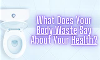 All the Questions You Were Too Shy To Ask About Body Waste