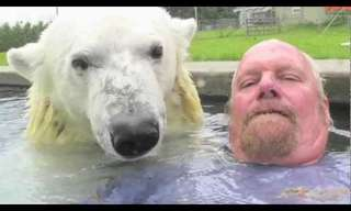 To Swim With A Polar Bear - Amazing!