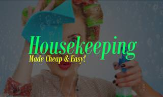 Housekeeping Made Cheap & Easy!