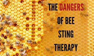 Warning! Bee Sting Therapy Can Be Dangerous