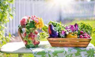 Terrific Tips for a Flourishing Garden