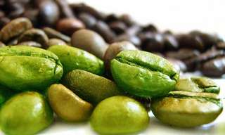 Studies Show: The Fat Burning Ability of Green Coffee Beans