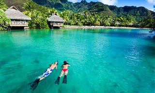 Immerse Yourself in the Endless Beauty of Tahiti