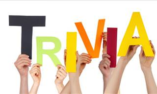 Trivia Quizzes: 7 Quizzes That'll Test Your Knowledge!