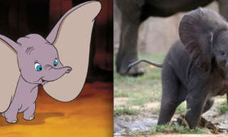 Adorable Disney Favorites Brought to Life!