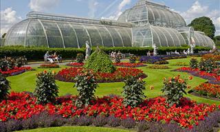 Choose a Botanical Garden for an Interactive Visit!