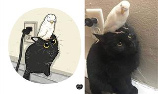 Cartoon Versions of the Funniest Cats on the Internet