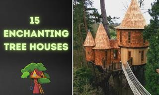 Wouldn't It Be Amazing to Live in These Lovely Treehouses?