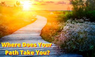 QUIZ: What Path Does Your Life Take?