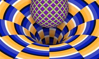These Optical Illusions Are Beyond Fascinating!