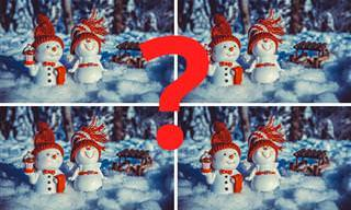 Find the Differences: The Special Winter Version!