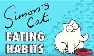 Simon's Cat: Eating Habits