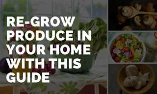 10 Vegetables That Can Be Re-grown At Home