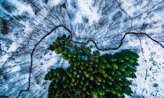 The Ultimate Drone Photography Collection