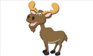The Moose Hunters