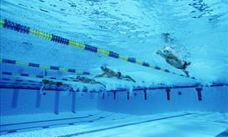 Three Paralympian Swimmers Go Head-to-Head