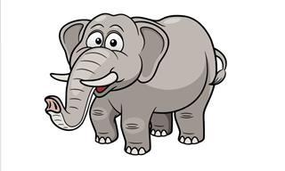 The Elephant Scheme