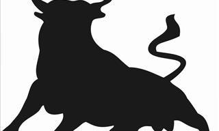 A Load of Bulls