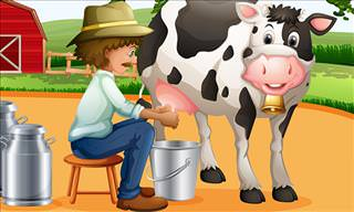 The Farmer and the Unruly Cow