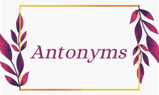 You Lose You're Out: Antonym Edition!