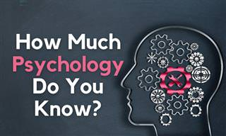 How Much Human <b>Psychology</b> Do You Know?