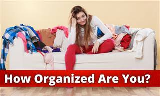 How ORGANIZED Are You?