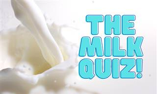 <b>What</b> Do You Know About Milk?