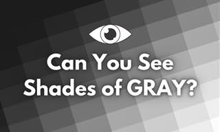 <b>How</b> <b>Well</b> Can <b>You</b> <b>See</b> <b>Shades</b> of GRAY?
